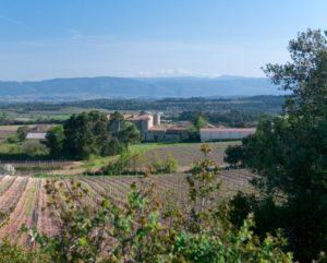 Vue sur les vignes de Caunes Minervois, l'Aude